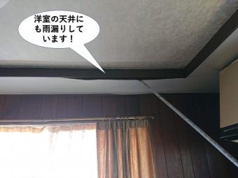 岸和田市の洋室の天井にも雨漏りしています
