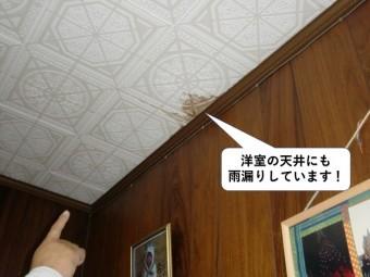 泉大津市の洋室の天井にも雨漏りしています