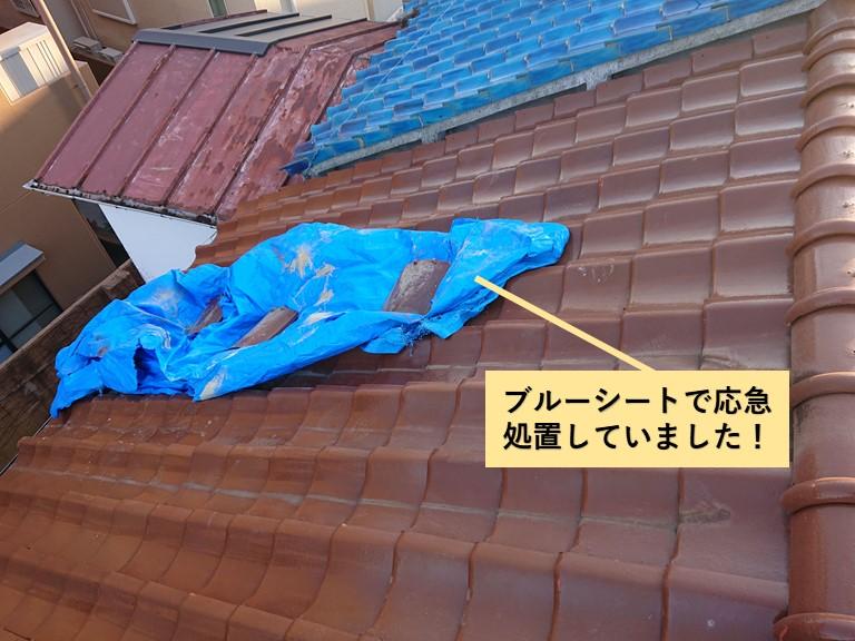 岸和田市の屋根をブルーシートで応急処置