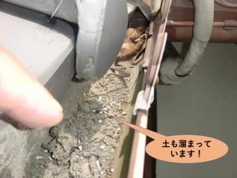 岸和田市の軒樋に土も溜まっています