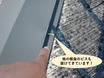 和泉市の他の板金のビスも抜けてきています