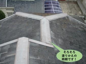 和泉市の屋根点検/屋根の塗り替え時期