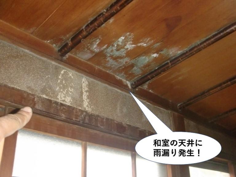岸和田市の和室の天井に雨漏り発生