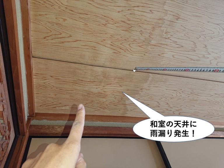 泉佐野市の和室の天井に雨漏り発生