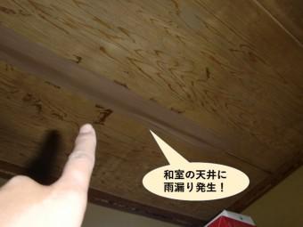 泉南市の和室の天井に雨漏り発生