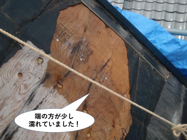 貝塚市の屋根の野地板の端の方が少し濡れていました