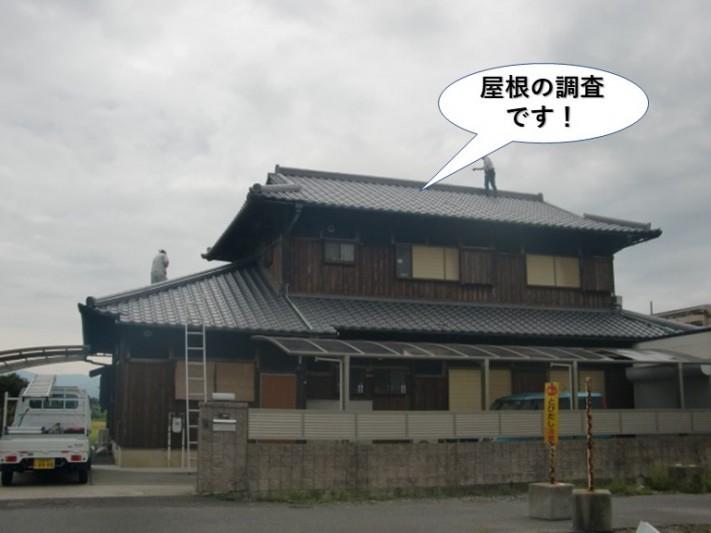 熊取町の屋根の現地調査です