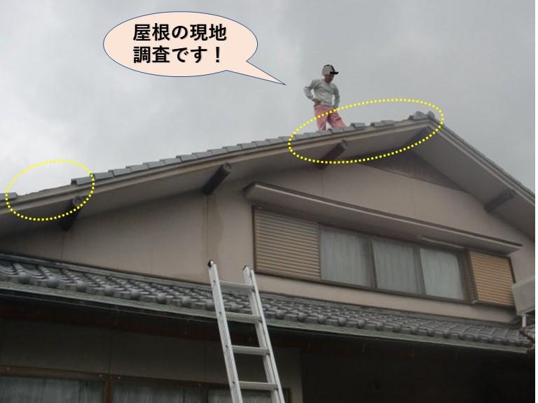 岸和田市の屋根の現地調査です