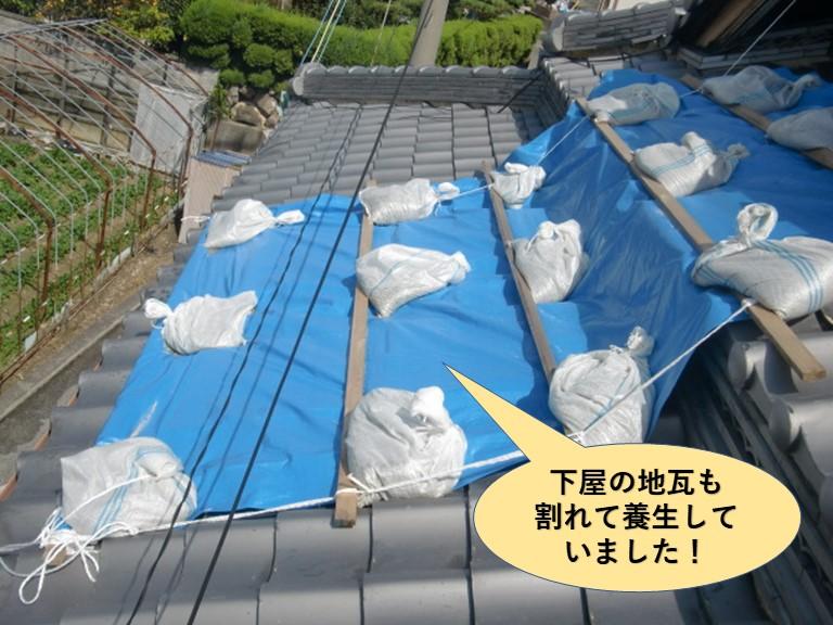 岸和田市の下屋の地瓦も割れて養生していました