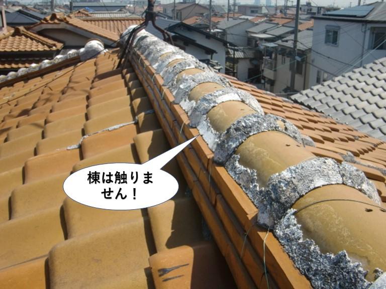 泉佐野市の棟は触りません