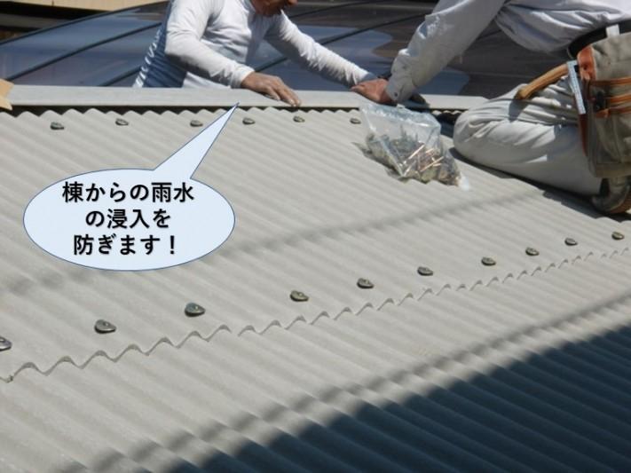 忠岡町の片流れの屋根の棟からの雨水の浸入を防ぎます