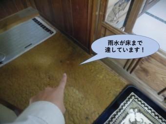 岸和田市の増築部で雨水が床まで達しています!