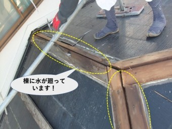 岸和田市の下屋の棟に水が廻っています