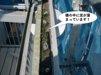 泉佐野市のテラスの樋の中に泥が溜まっています