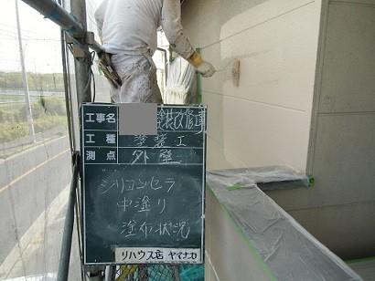真上町の外壁塗装と屋根塗装で外壁中塗り