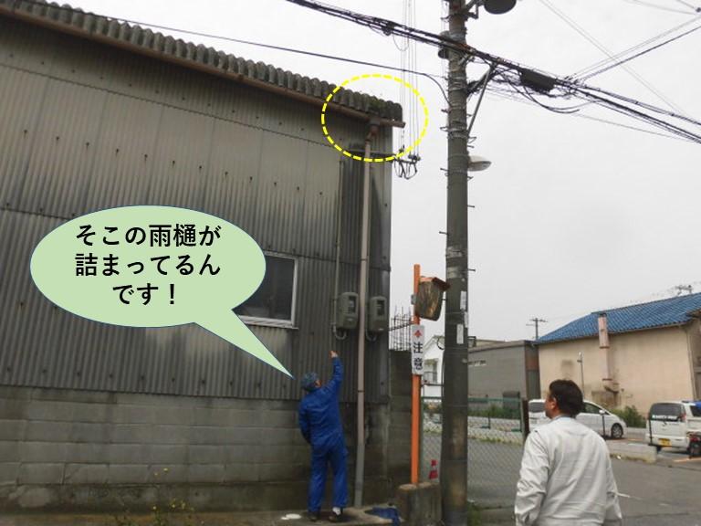 和泉市の工場の雨樋の詰まりで現地調査にお伺い