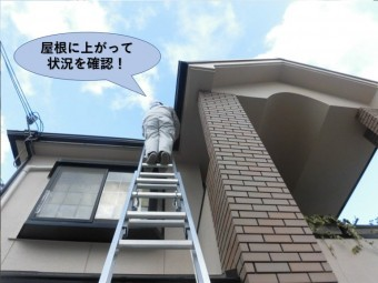 阪南市の屋根に上がって状況を確認!
