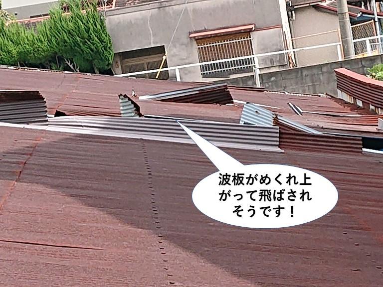 貝塚市のトタン波板がめくれ上がって飛ばされそうです