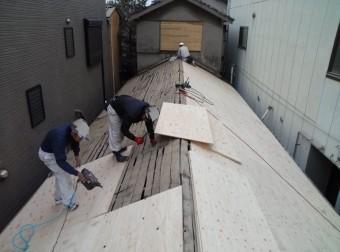 泉北郡忠岡町の屋根の構造用合板設置中
