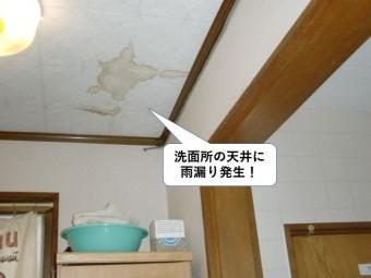 泉大津市の洗面所の天井に雨漏り発生