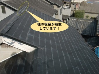 和泉市の棟の板金が飛散しています