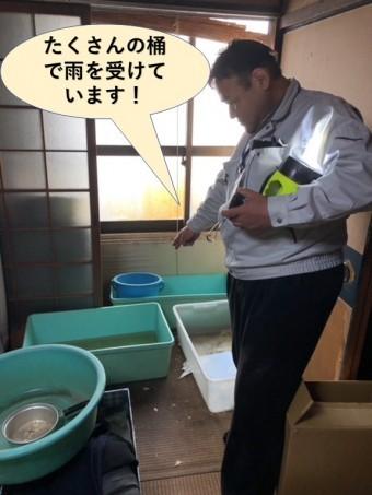 岸和田市でたくさんの桶で雨を受けています