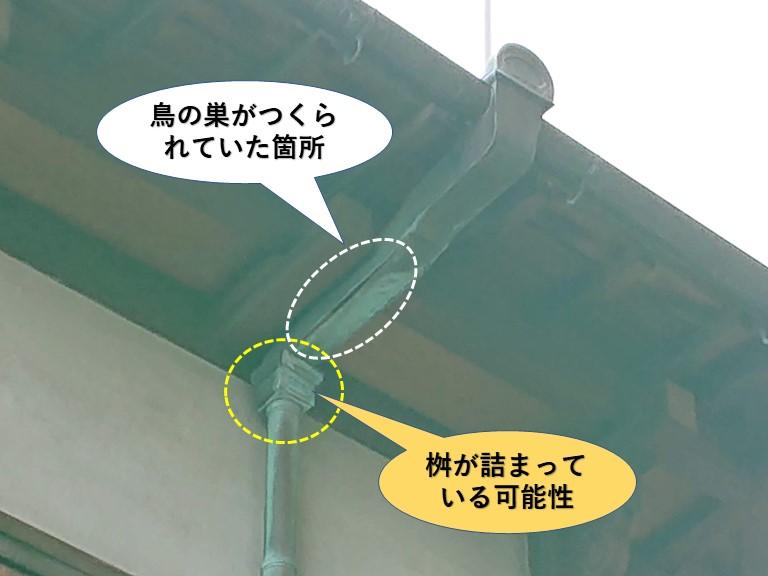 泉佐野市の鳥の巣と桝