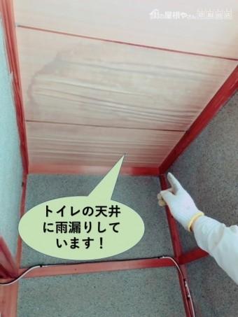 忠岡町でトイレの天井に雨漏りしています