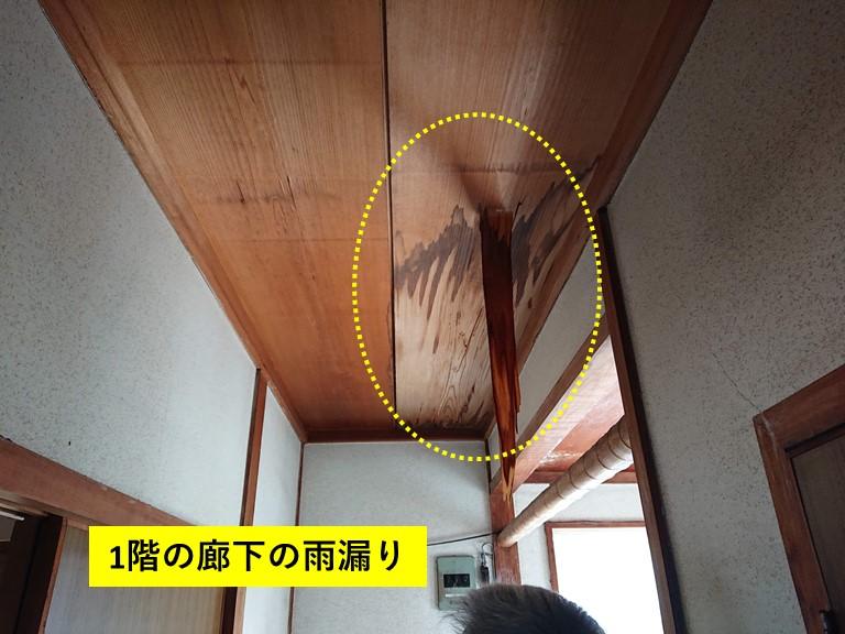 和泉市の1階の廊下の雨漏り