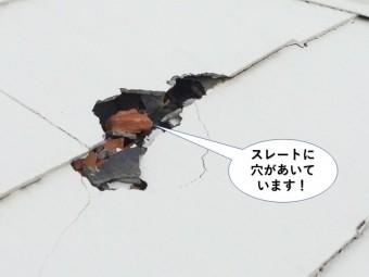 泉南市のスレートに穴が開いています