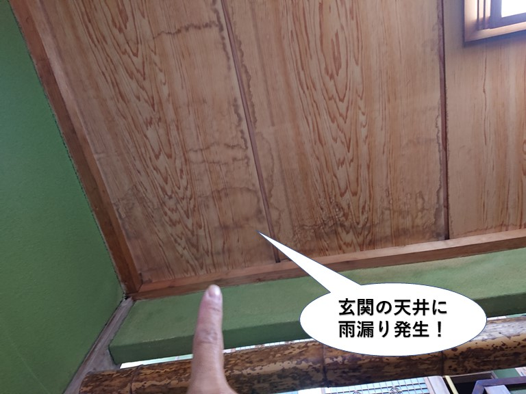 阪南市の玄関の天井に雨漏り発生