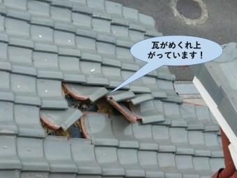 忠岡町の瓦がめくれ上がっています