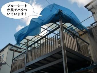 泉佐野市のテラスを養生しているブルーシートが風でバタ付いています