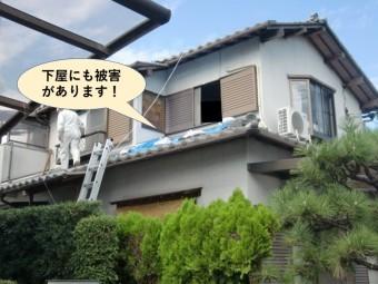 阪南市の下屋にも被害があります