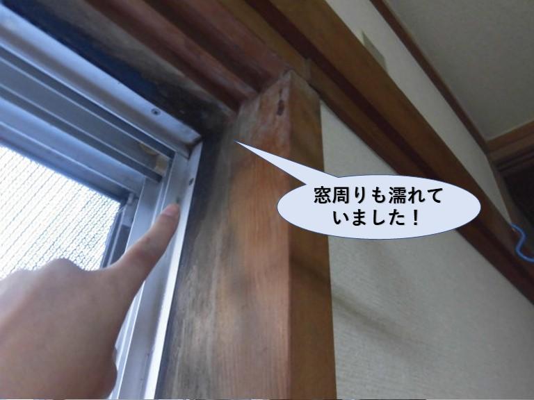 泉佐野市の窓周りも濡れていました