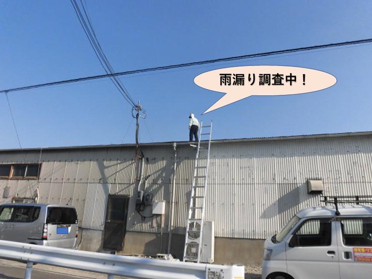 岸和田市磯上町の倉庫の雨漏り現地調査