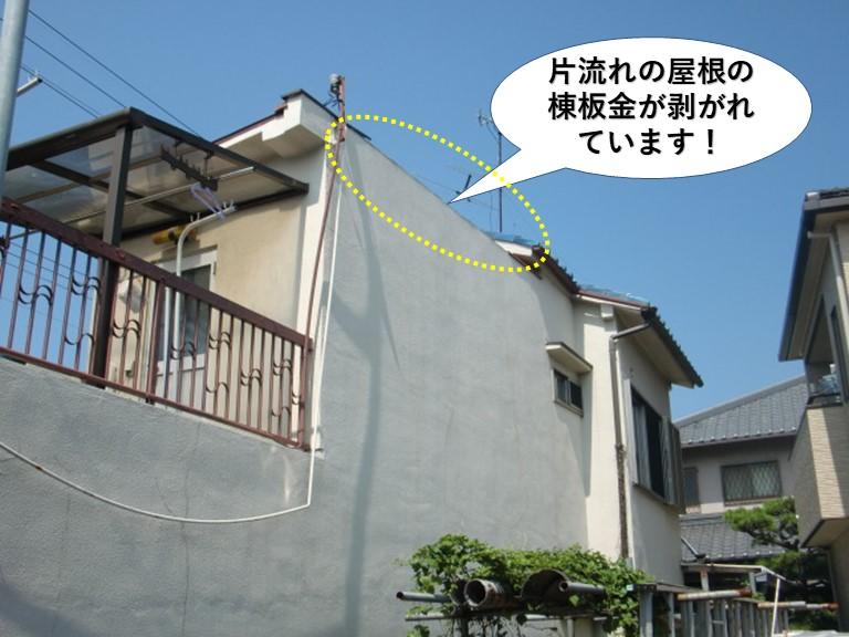 岸和田市の片流れの屋根の棟板金が飛散