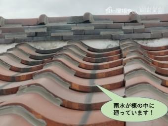 岸和田市の棟の中に雨水が廻っています!