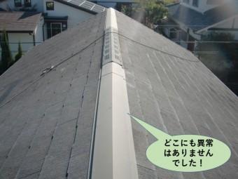 阪南市の屋根はどこにも異常はありませんでした