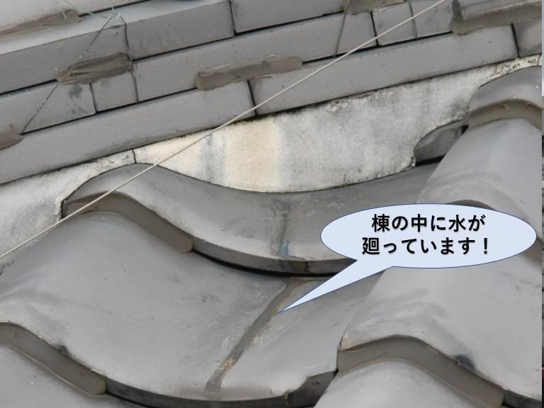 岸和田市の棟の中に雨が入っています!