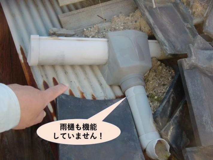 泉大津市の雨樋も機能していません
