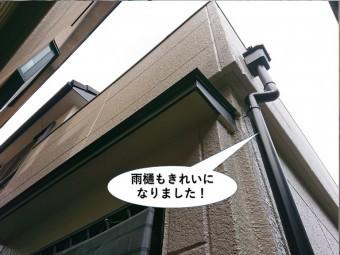 岸和田市の雨樋もきれいになりました
