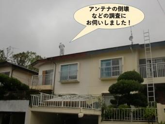 岸和田市のアンテナ倒壊などの調査