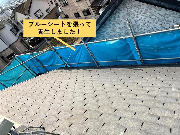 熊取町で屋根にブルーシートを張って養生