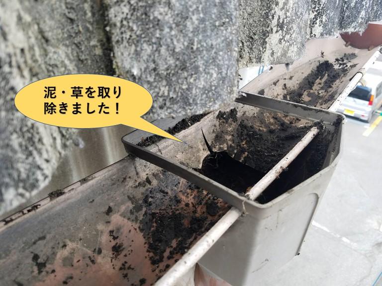 和泉市の工場の雨樋に泥・草を取り除きました