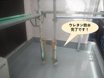 岸和田市のベランダのウレタン防水完了です