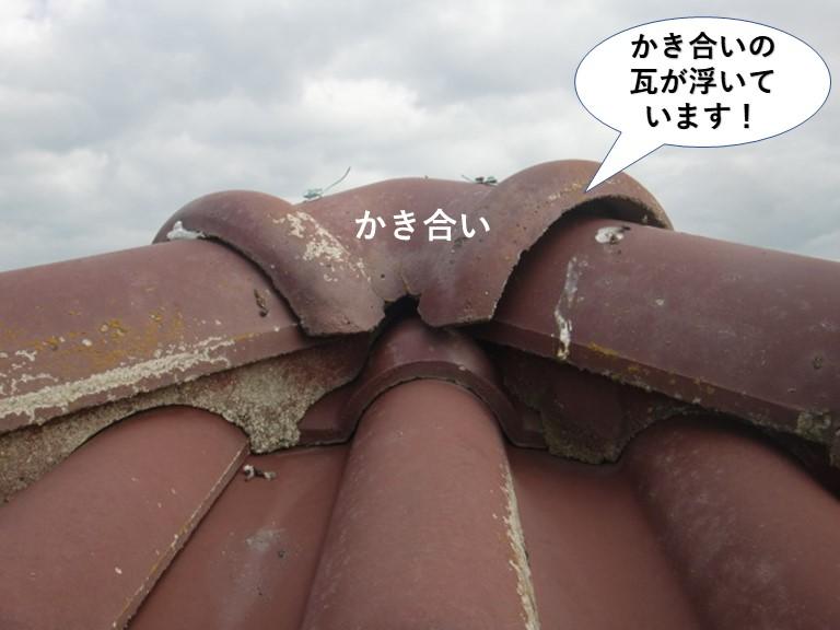 熊取町のかき合いの瓦が浮いています