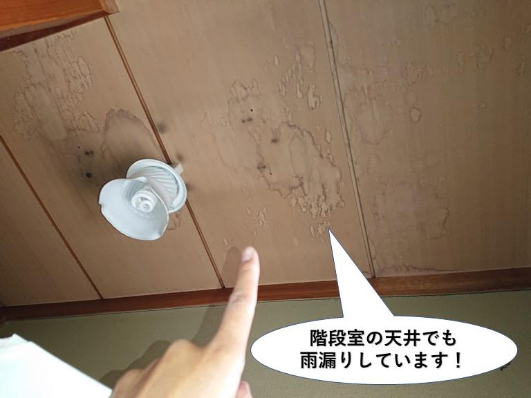 泉佐野市の階段室の天井でも雨漏りしています
