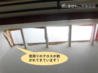 和泉市の窓周りのクロスが剥がれてきています