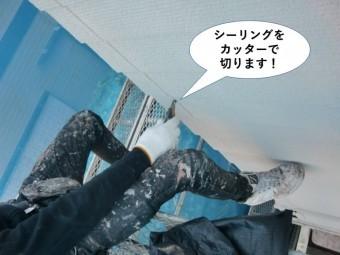 貝塚市のシーリングをカッターで切ります